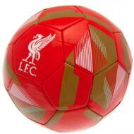 Liverpool labda RAXY